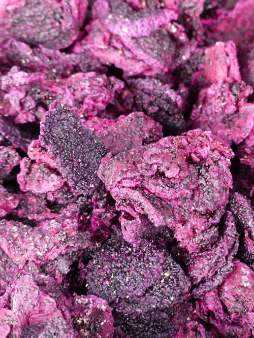 dried fruit dragon fruit dried