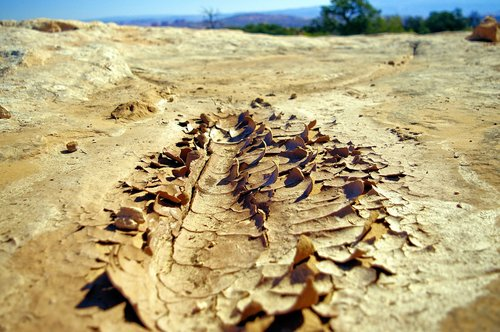 dried mud at canyonlands  mud  dirt