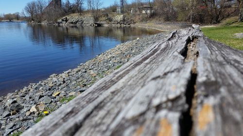 driftwood lake aged