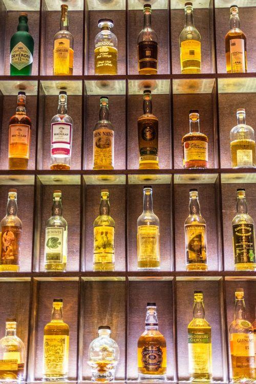 drink alcohol booze