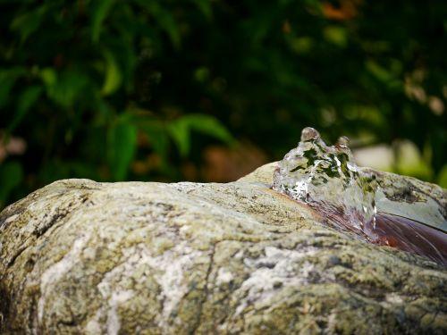 drinking water water stone