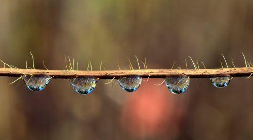 drip mirroring water