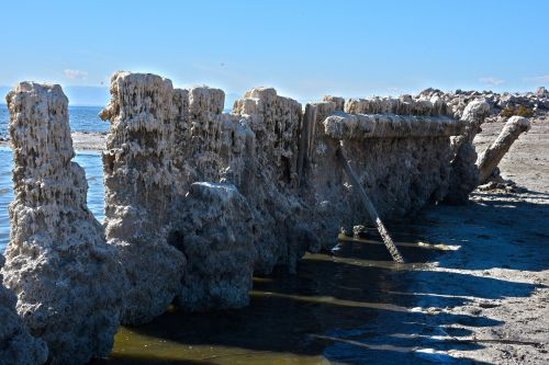Dripping Pilings