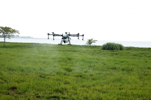 drone asperjando drone farm fumigation