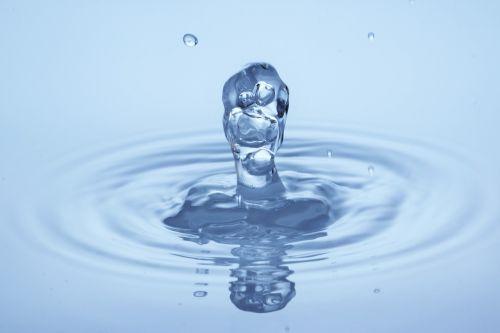 lašas vandens,makro,lašelinė