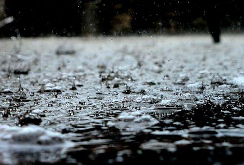 drops rain rain drops