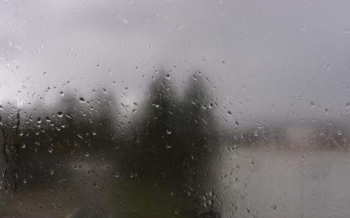 drops rain window