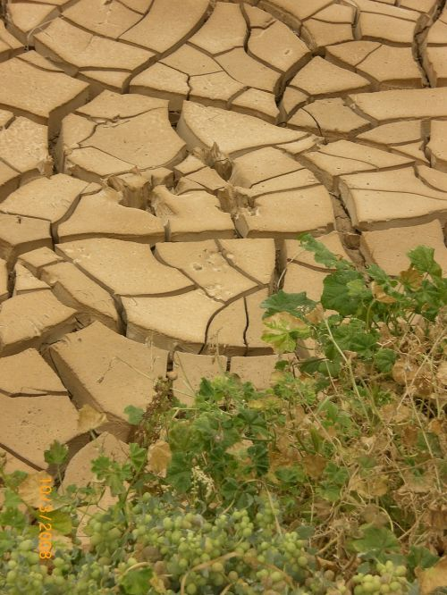 drought dry period clay
