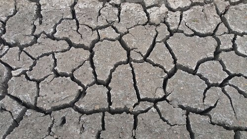drought  arid  climate