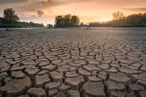 drought  cracks  dry