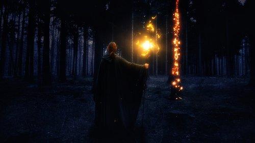 druid  forest  fantasy