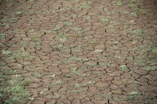 dry global warming dehydrated