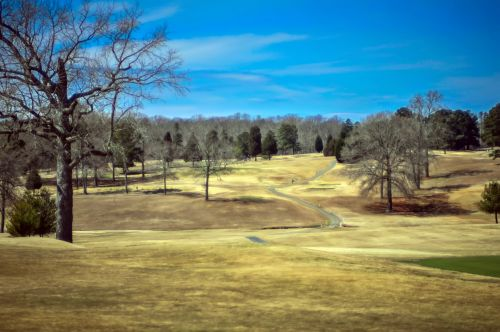 Dry Grass On Golf Course