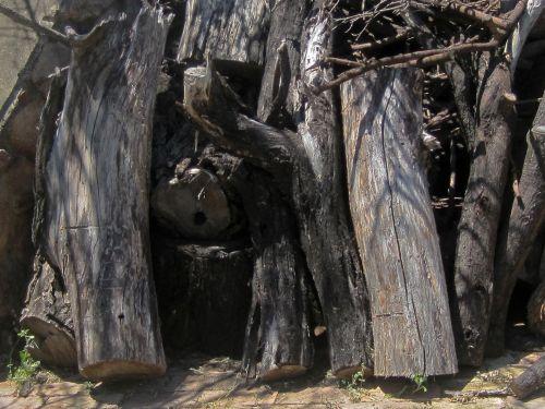 Dry Logs Of Wood
