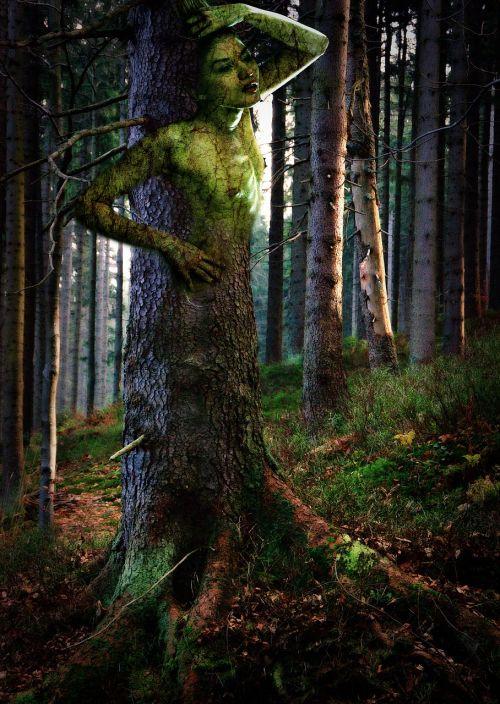 dryad girl leśna