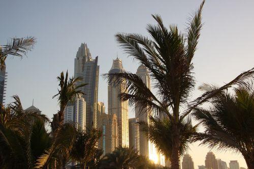 dubai skyscrapers sunset