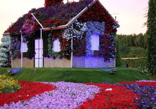 dubai miracle garden garden uae