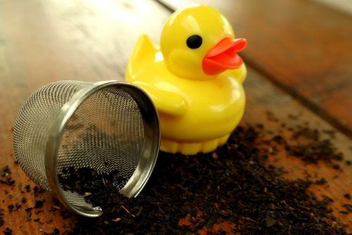 duck tea infuser tee