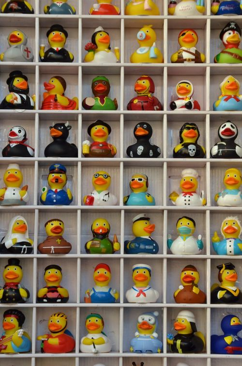 duck rubber duck bath
