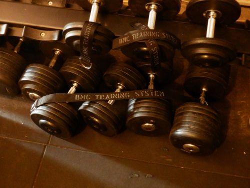dumbbells bodybuilding muscles