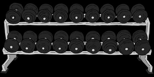 dumbbells rack weights