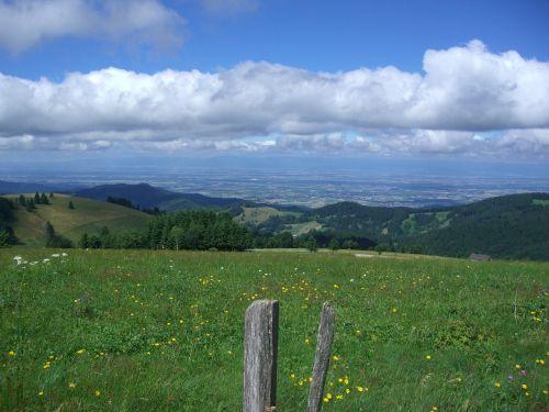 dump münstertal rhine valley