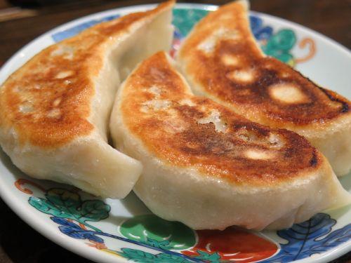 dumplings fried japanese
