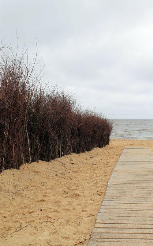 dunes coast beach