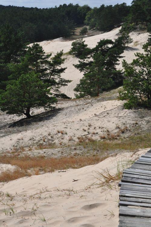 dune the coast sand