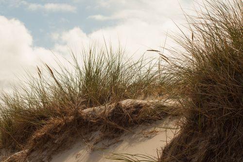 dune island north sea