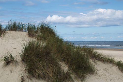 dune baltrum north sea east frisia
