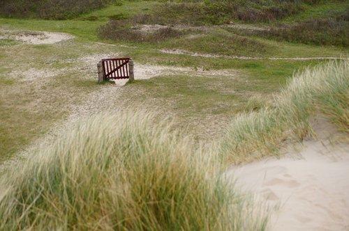 dune  sand  island