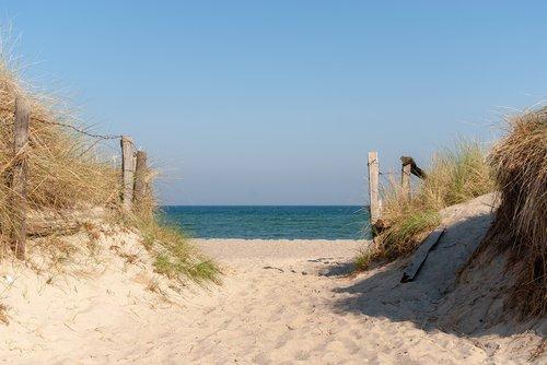 dune  sand  dunes