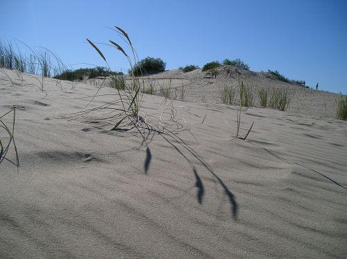 dune lithuania kuršská scythe