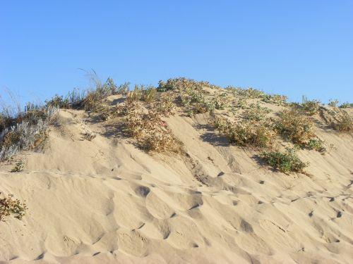dune beach cadiz
