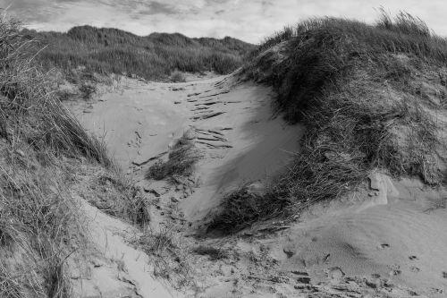 dune north lee holland
