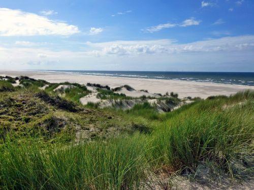 dune landscape borkum island