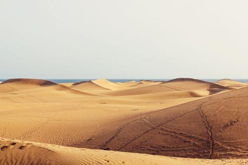 dunes gran canaria sand