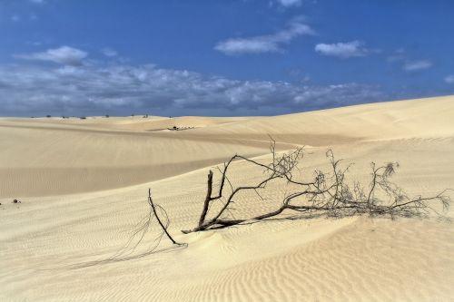 dunes sand sun