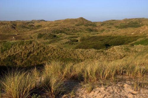 dunes landscape cornwall