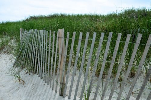 dunes sand beach