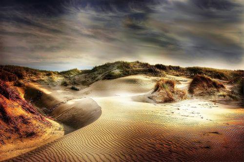 dunes beach sand