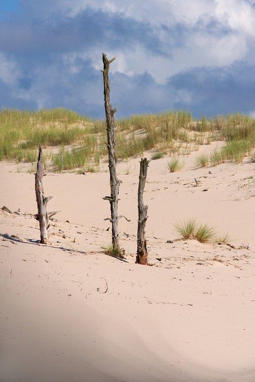 dunes  sand  sand dunes