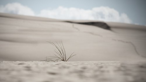 dunes  sand dunes  poland