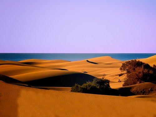 dunes  sand dunes  sea