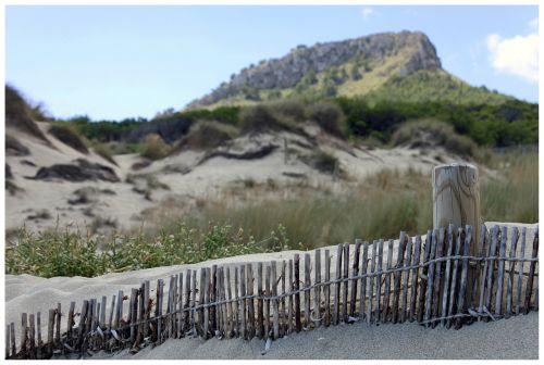 dunes sand fence