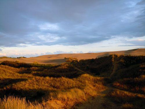 dunes sand dunes dune landscape