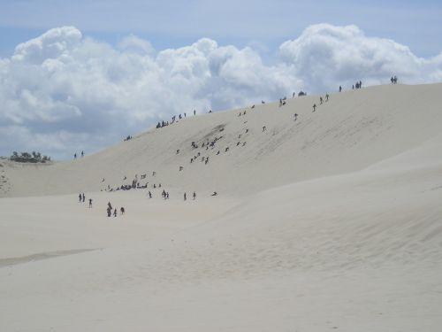 dunes shifting sand dunes sand