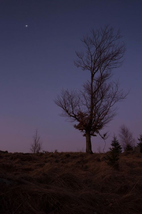 dusk evening sky romance