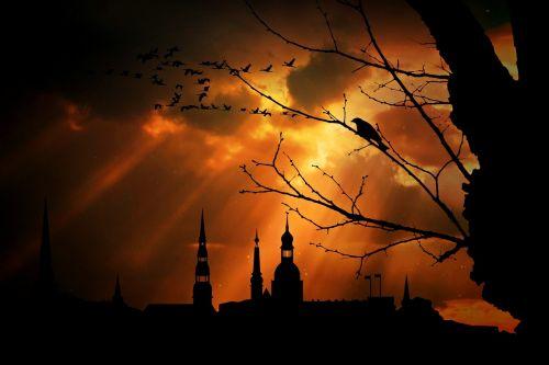 dusk city view city panorama